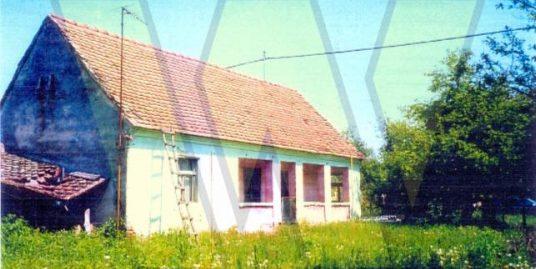 Donje Bazije Kuća, dvor i voćnjak